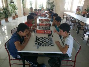 satranç (14)