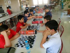 satranç (16)