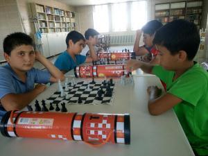 satranç (17)