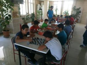 satranç (20)